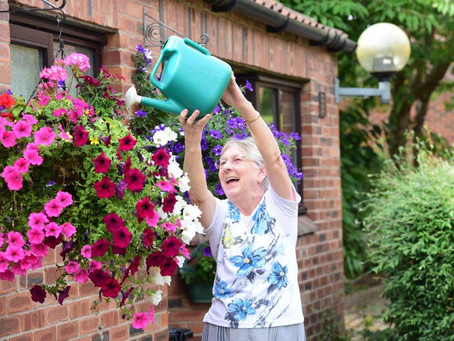 York Housing Association in Bloom 2020….the year we stayed at home