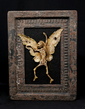 Cottingley Fairy