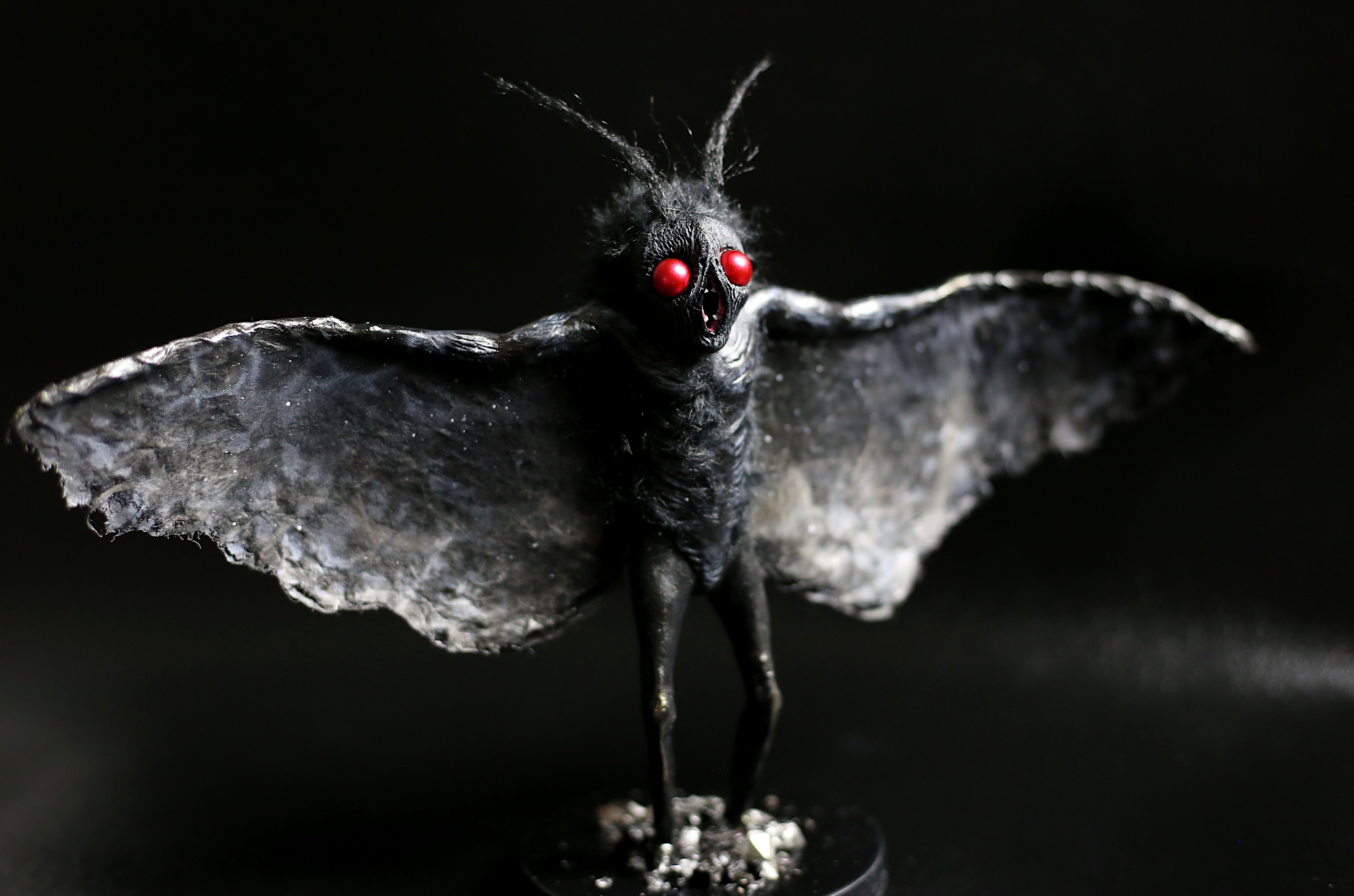 Little Mothman 2019