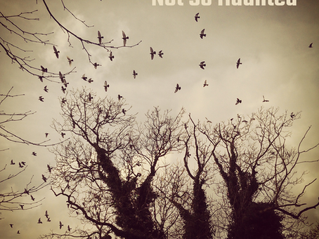 'Not So Haunted' Single 31st October