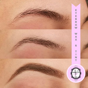 Brow Wax & Tint in Kitchener
