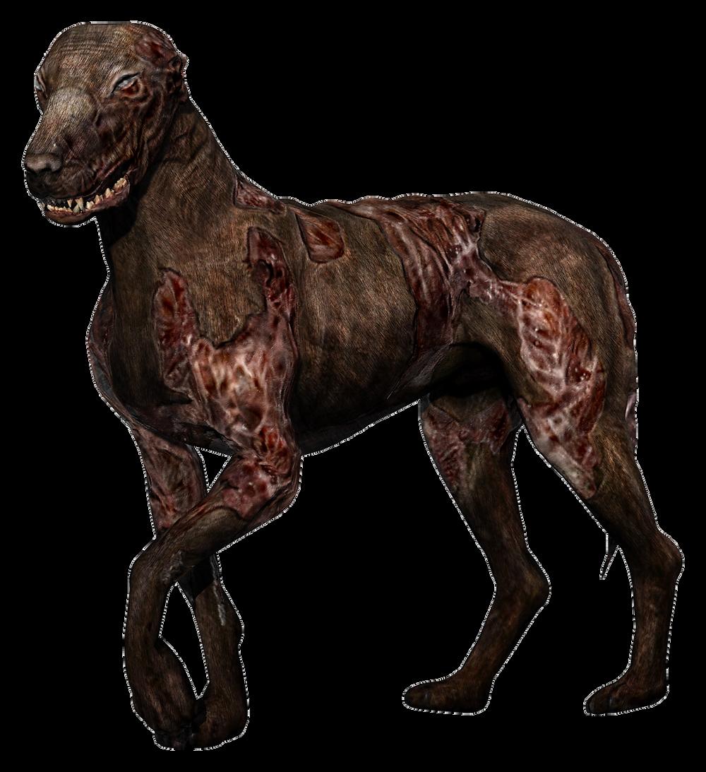 S.T.A.L.K.E.R. Blind Dog Mutant