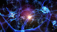 Neurons-Image-535x301.png