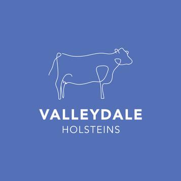 Valleydale Holsteins.jpg