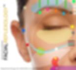 Facial Reflexology Advanced Bergman Method