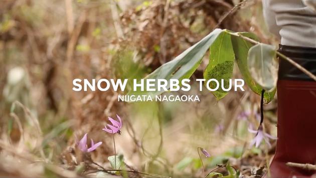 SNOW HERBS TOUR