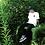 Thumbnail: Fahg Life Cotton Twill Low Cap [Blue]