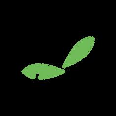 蔵王_アートボード 1 のコピー 4.png