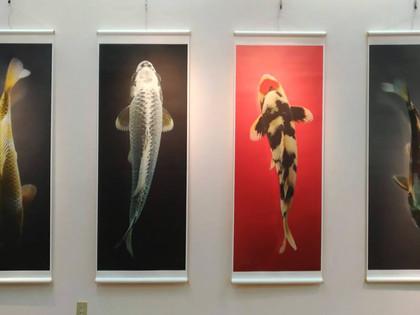 HIROSUI Photo Exhibition