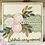 Thumbnail: Lace Trim Selection