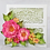 Thumbnail: Wild Rose Collection - Large Wild Rose Die