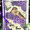 Thumbnail: Stamp-a-Card Amongst the Flowers