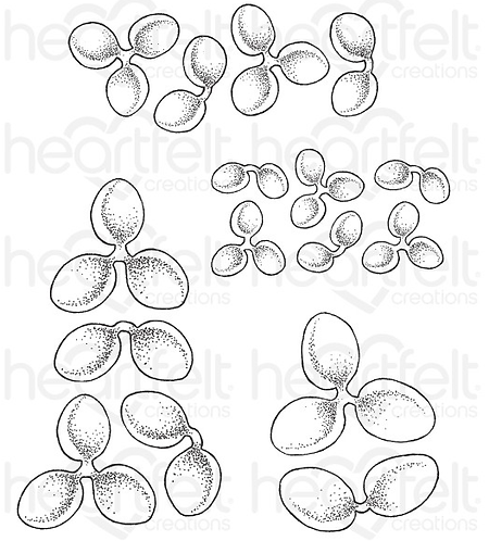 Tropical Paradise Collection - Tropical Plumeria Cling Stamps