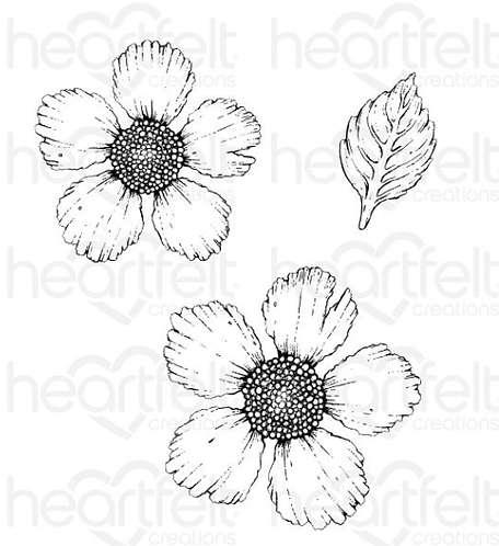 Wild Rose Collection - Large Wild Rose Cling Stamp Set