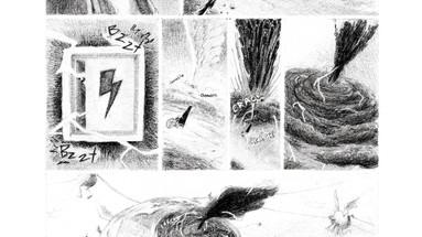 No5, page 5
