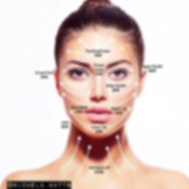 fibroblast face chart.jpg