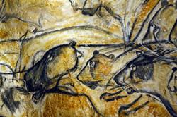 Les_lions_en_chasse_de_la_Caverne_du_Pont-d'Arc_-®_SYCPA_-_S+®bastien_Gayet_