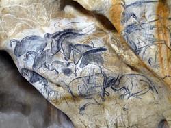 Lepanneaudes_chevaux_de_La_Caverne_du_Pont-d'Arc_-®_SYCPA