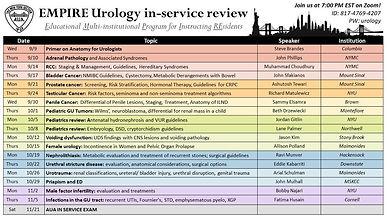 EMPIRE Urology in-service review - Testicular Cancer: Risk factors, Seminoma and Non-seminoma treatment algorithms