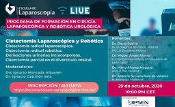 Programa de Formación en Cirugía Laparoscópica y Robótica Urológica - Cistectomía Laparoscópica y Robótica