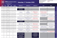 ISUOG Virtual World Congress on Ultrasound in Obstetrics and Gynecology - Auditorium 2