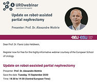 Update on robot-assisted partial nephrectomy