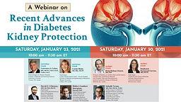 Recent Advances in Diabetes Kidney Protection