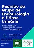 Reunião do Grupo de Endourologia e Litíase Urinária
