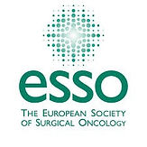 ESOI-ESSO-ESTRO Webinar on Rectal Cancer: a Multi-Disciplinary Approach to Imaging