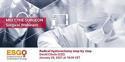 Meet the surgeon: Radical hysterectomy step by step
