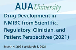 Drug Development in NMIBC from Scientific, Regulatory, Clinician, and Patient Perspectives (2021)