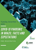 COVID-19 Pandemic in Brazil: Facts and Expectations
