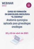 """Curso de Formación en Ginecología Oncológica """"El Escorial"""" - Anatomía quirúrgica aplicada para ginecólogos oncólogos"""