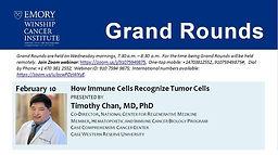 Grand Rounds - How Immune Cells Recognize Tumor Cells