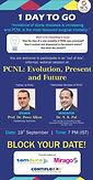 PCNL: Evolution, Present and Future
