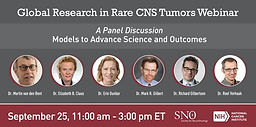 Transdisciplinary Global Research in Rare CNS Tumors: A Framework to Impact Outcomes Across CNS Disease