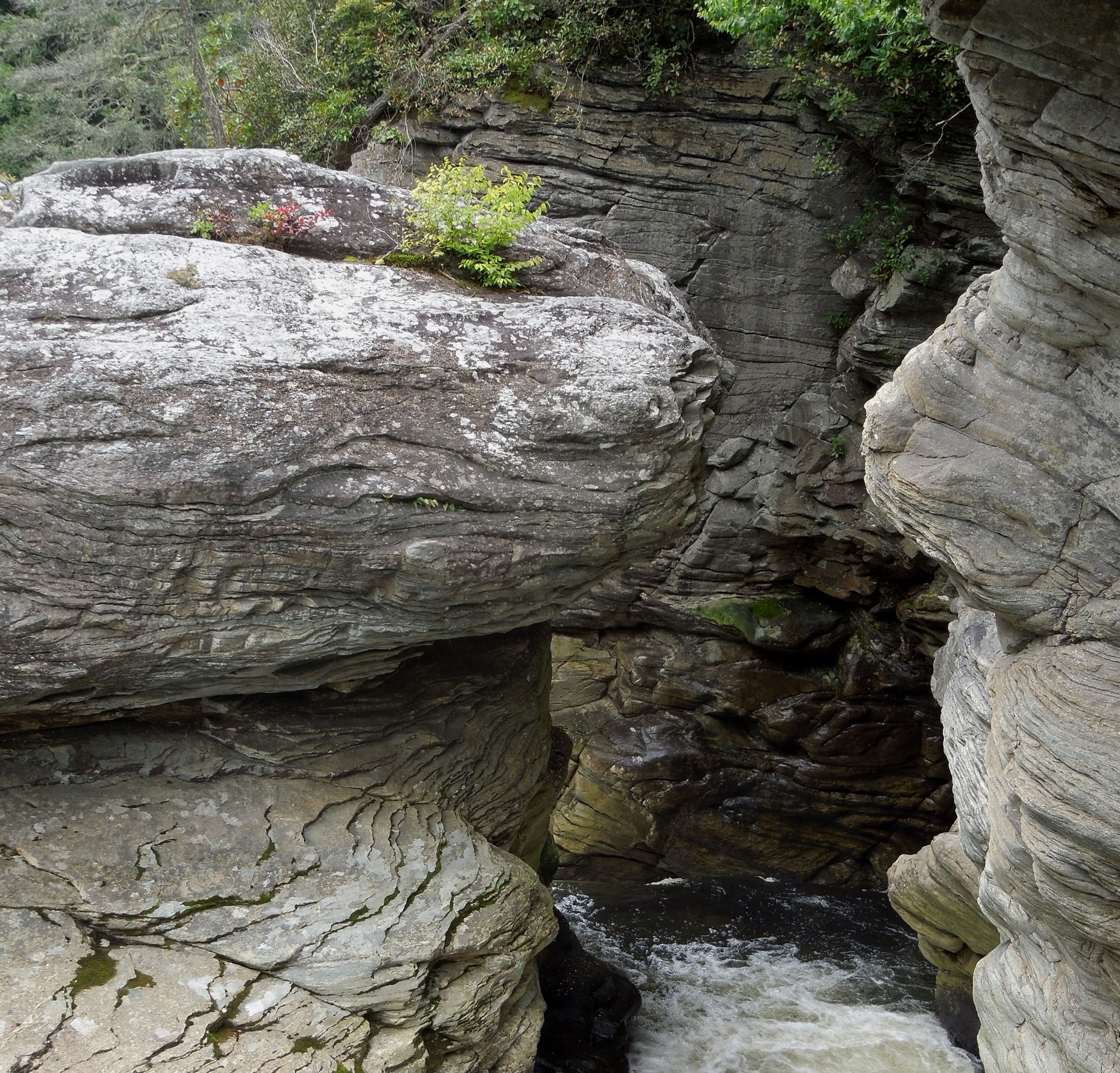Gorge at Linville Falls