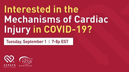 Interested in the Mechanisms of Cardiac Injury in COVID-19?