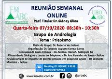 Reunião Semanal Online - Grupo de Andrologia