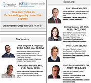 Tips and Tricks in Echocardiography: meet the experts