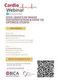 IVUS: Basics of Image Interpretation & How to Optimise Stents