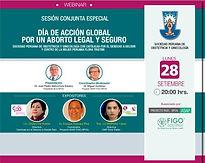 Sesión Conjunta Especial - Día de acción global por un aborto legal y seguro