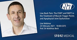 Low Back Pain: The ESWT and EMTT in the Treatment of Muscle Trigger Points and Apophysial Joint Dysfunktion