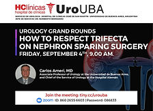 Urology Grand Rounds - How to Respect Trifecta on Nephron Sparing Surgery