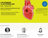 AORTIC STENOSIS MASTERCLASS 2020 OPTIMIZED PATIENT PATHWAY
