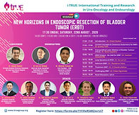 New Horizons in Endoscopic Resection of Bladder Tumor (ERBT)