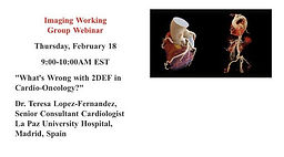 Imaging Working Group Webinar - What's Wrong with 2DEF in Cardio-Oncology?