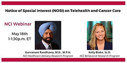 Telehealth NOSI Webinar