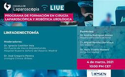 Programa de Formación en Cirugía Laparoscópica y Robótica Urológica - Linfadenectomía