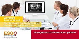 Multidisciplinary Tumour Board - Management of Vulvar cancer patients